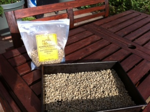 Green coffee beans from Sunergos