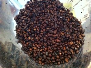 Beautiful freshly roasted coffee beans